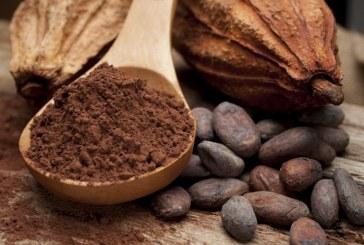 Super cacao più antiossidanti della frutta