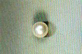 Gemmoterapia perla