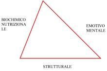 kinesiologia triangolo 2