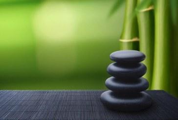 La meditazione dinamica
