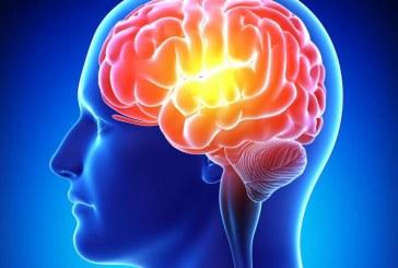 Memoria: un aiuto da vitamina B12
