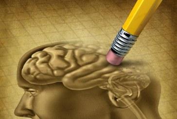 Menta, una pianta per il cervello