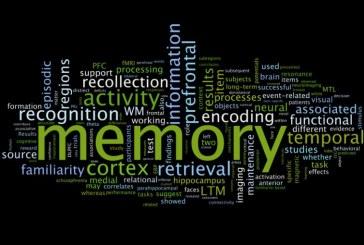Memoria a lungo e breve termine