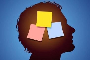L'encefalo non è un computer