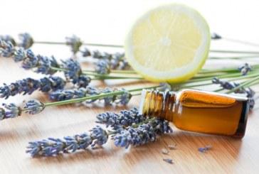 Olio Essenziale di Artemisia