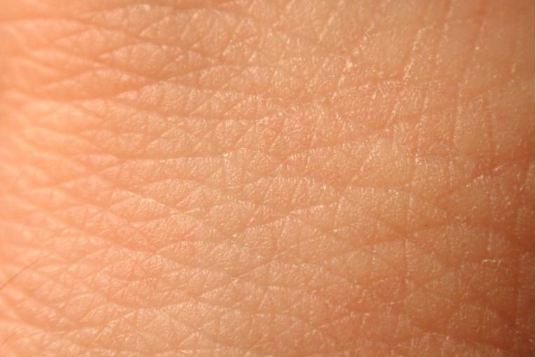 oli essenziali per la pelle