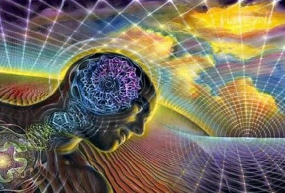 Sonno e cervello