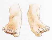 piedi dita