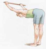 dorso muscoli della schiena