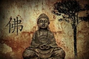 I pilastri dello Zen